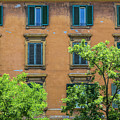 Buildings Opposite The Vatican Museum by Michael Evans