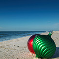 Bulbs On The Beach Verticle by Michael Thomas