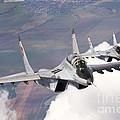 Bulgarian And Polish Air Force Mig-29s by Daniele Faccioli