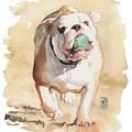 Bull And Ball by Debra Jones
