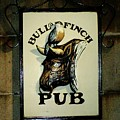 Bull And Finch Pub by Pamela Smith