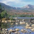 Bull Moose Feeding In Sandy Stream Pond by John Burk