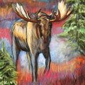 Bull Moose In Fall by Tracey Hunnewell