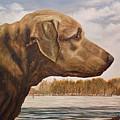 Bull by Rob Blauser