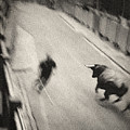 Bull Run 2 by Rafa Rivas