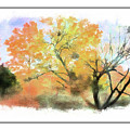 Bull Run Autumn by Margie Wildblood