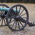 Bull Run Green Cannon In Field by SAJE Photography