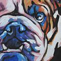 Bulldog Baby by Lea S
