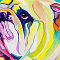 Bulldog - Bully by Alicia VanNoy Call