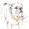 Bulldog by C F Legette