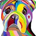 Bulldog by Eloise Schneider Mote