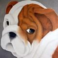 Bulldog Puppy by Terri Meyers
