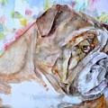Bulldog - Watercolor Portrait.7 by Fabrizio Cassetta