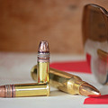 Bullets by Elizabeth Wilson