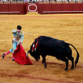Bullfighting 21 by Andrew Fare
