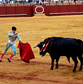 Bullfighting 22 by Andrew Fare