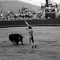 Bullfighting 36b by Andrew Fare
