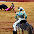 Bullfighting 37 by Andrew Fare