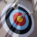 Bullseye by Ann Keisling
