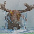 Bullwinkle by Dan Hausel