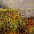 Bulrushes On The Banks Of The Seine 1874 by Renoir PierreAuguste