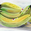 Bunch Of Bananas by Sarah Lynch
