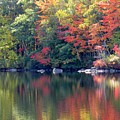 Bunganut Lake Maine Foliage 13 2016 by Lynne Miller