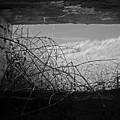 Bunker View by Julia Raddatz