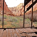 Bunkhouse View 3 by Tonya Hance