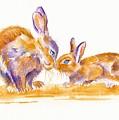 Bunnies by Debra Hall
