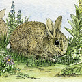 Bunnies by Laurie Rohner