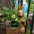 Bunny 63 by Joyce StJames