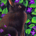Bunny And Violets by Valerie  Evanson