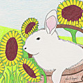 Bunny In A Basket by John Wiegand