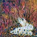 Bunny by Mary Jo Hopton