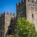 Bunratty Castle by Tony Noto