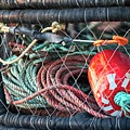Buoy And Ropes by Teresa Wilson