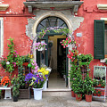 Burano Flower Shop by Dave Mills