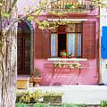 Burano Italy House  by John McGraw
