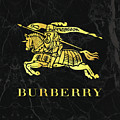 Burberry - Black And Gold - Lifestyle And Fashion by TUSCAN Afternoon