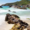 Burgess Beach by Nicholas Blackwell