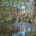Burke Hall Cypress Lake by Gregory Daley  MPSA