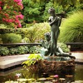 Burnett Fountain Garden by Jessica Jenney