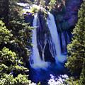 Burney Falls by Frank Wilson