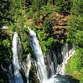 Burney Falls by James Eddy