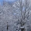 Burnidge Winter by David Bearden