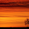 Burning Country Sky by James BO Insogna