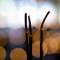 Burning Incense by Ray Laskowitz - Printscapes