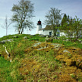 Burnt Island Light Station 11 by John Kenealy