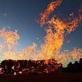 Burnt Offerings by James Brunker